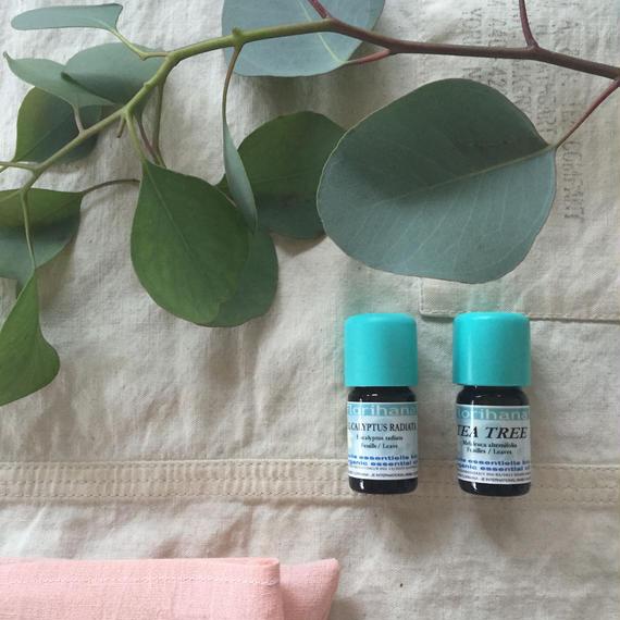 TEA TREE / EUCALYPTUS  organic
