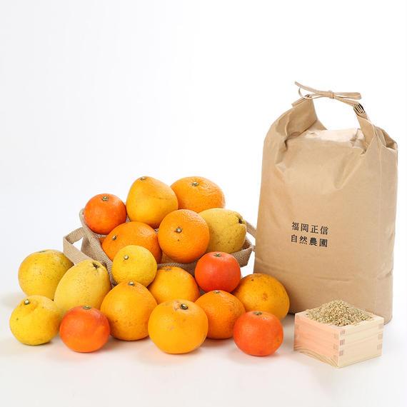 【450-236】お楽しみ10kgセット(ハッピーヒルうるち玄米5kg×果物おまかせミックス5kg)