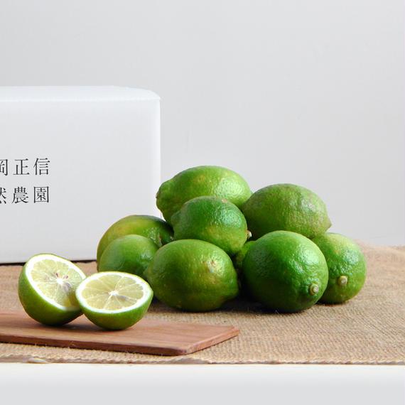 【450-100】レモン(2kg)