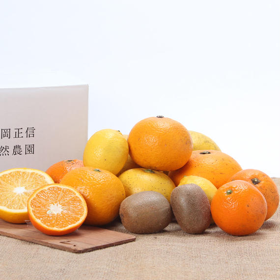 【450-007】果物おまかせMIX(2月下旬)3kg