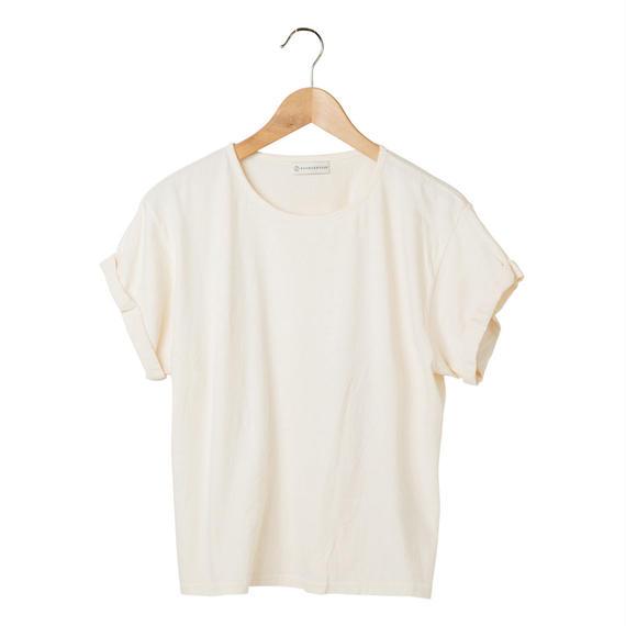 FT040309M / Tシャツ  FEMALE -  echinacea  -