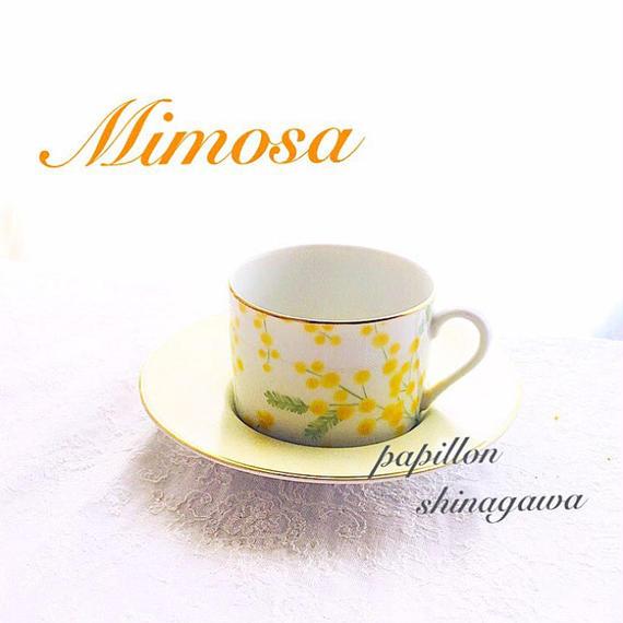 ミモザC&S