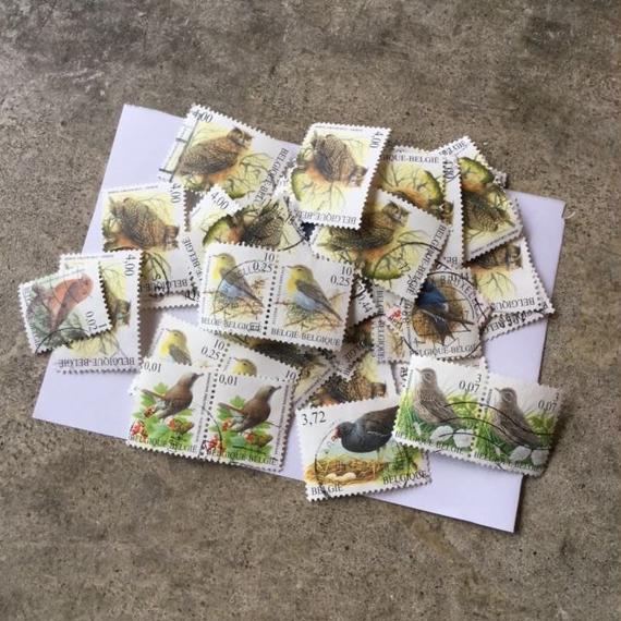 ベルギーの鳥の使用済み切手アソート