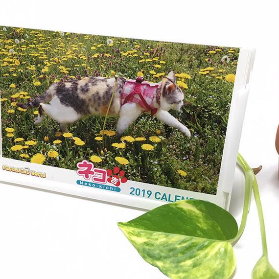 ネコ吉 卓上カレンダー2019 [限定販売] A003