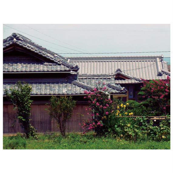 PHOTO PANEL / teshima #1