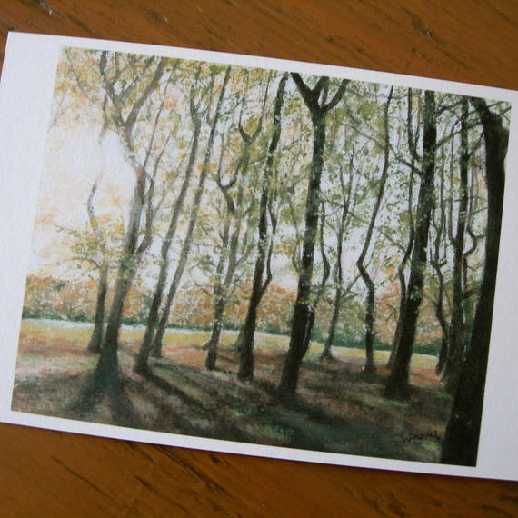 postcard / 公園の夕暮れ