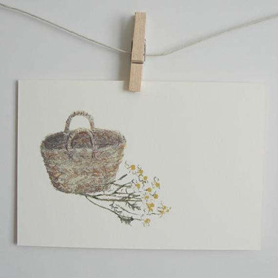 postcard / basket