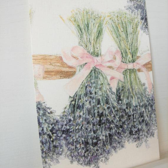postcard / dry lavender