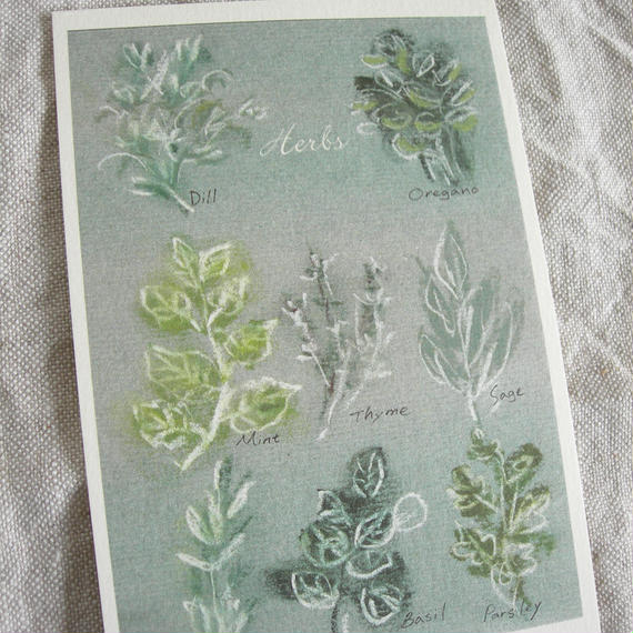 postcard / herbs