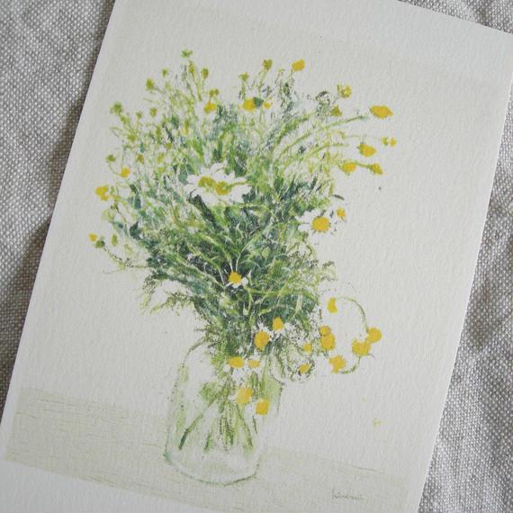 postcard / camomile