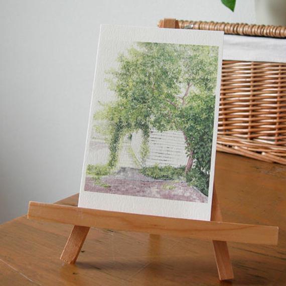 postcard / 光と緑の朝