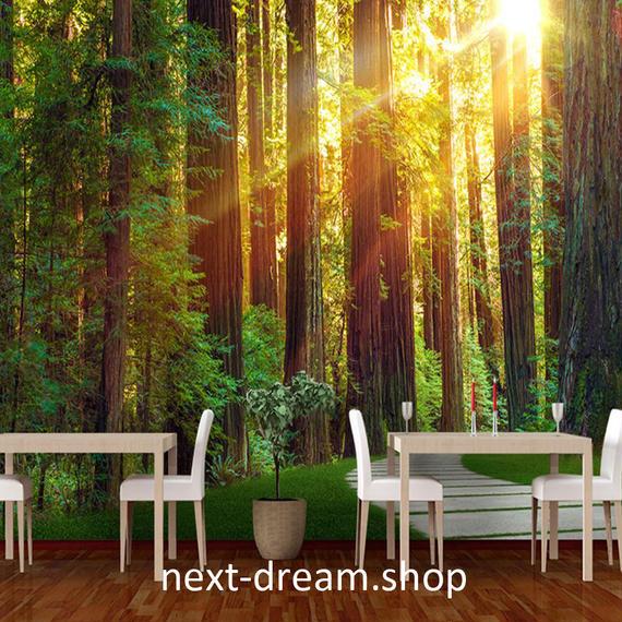 3D 壁紙 1ピース 1㎡ 自然風景 森林浴 癒し 太陽 インテリア 装飾 寝室 リビング h02167