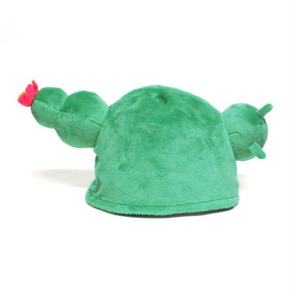 みいつけた!サボさん 帽子