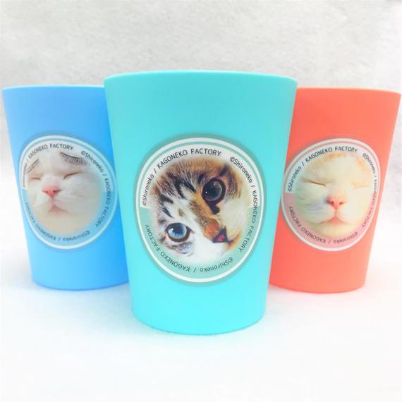 笑うとタイヘン ☆ かご猫しろの three smile cups ♪