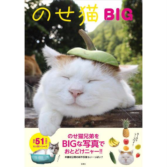 のせ猫 BIG