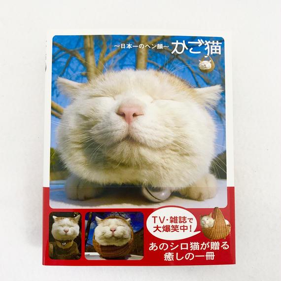 かご猫 日本一のヘン顔