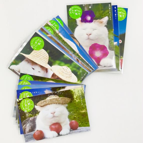 ポストカード ★全18種★