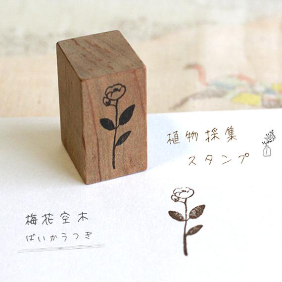 植物採集スタンプ:8『梅花空木(バイカウツギ)』