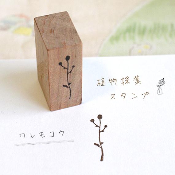 植物採集スタンプ:11『ワレモコウ』