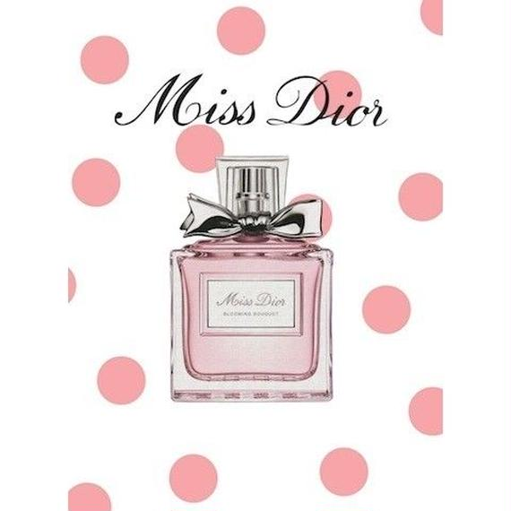 キャンバス530×410×D20mm 【Miss Dior #yg20】