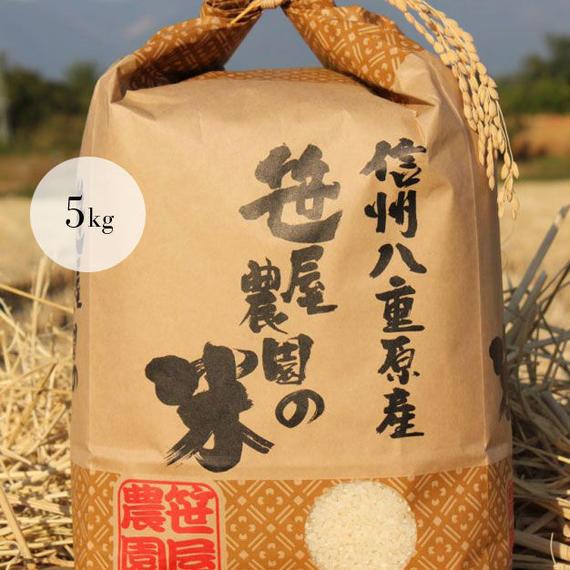 笹屋農園 信州八重原米コシヒカリ 生産者限定米 笹屋農園の米(5kg)(栽培期間中、農薬・化学肥料を 半分以下に削減し栽培しました)