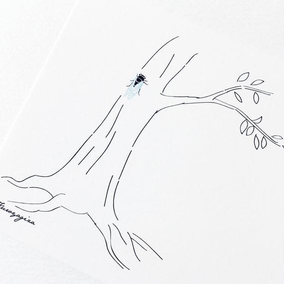 ポストカード せみのいる木