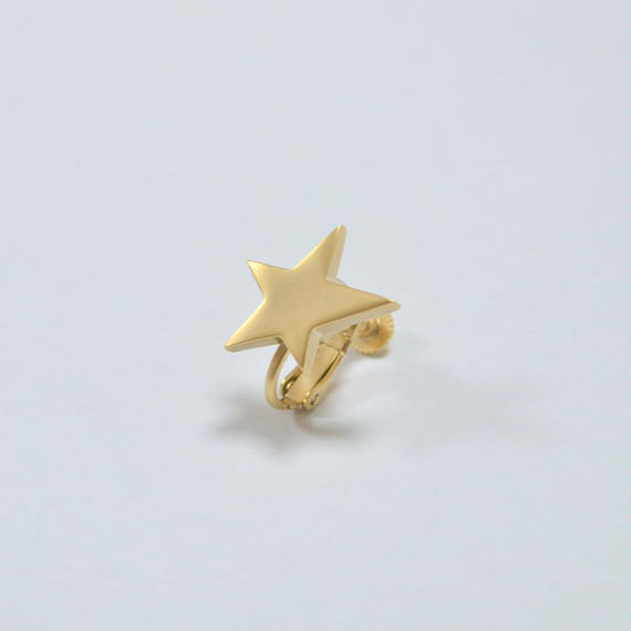 star earring ( small / mat gold )