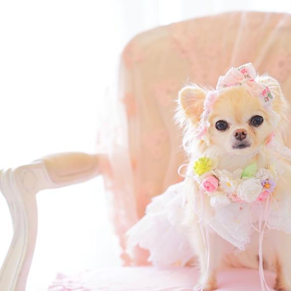 【Anniversary dress】Flower Girl Pink/Parti du Rubanさんコラボカチューシャセット/Mサイズ