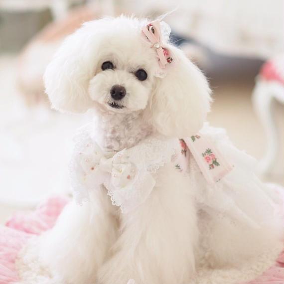 【Anniversary dress】Flower Girl Pink/バレッタ