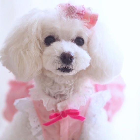 【Pink millefeuille】ピンクミルフィーユ    シングルバレッタ