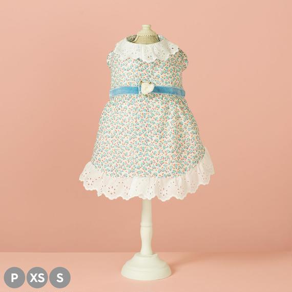 【 Floret (Blue Ribbon) 】フローレット (ブルーリボン) (P / XS / Sサイズ)