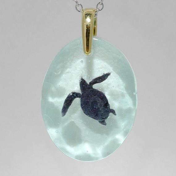 アオウミガメ(turtle134)