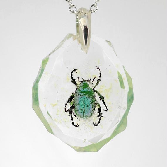 コガネムシ(scarab003)