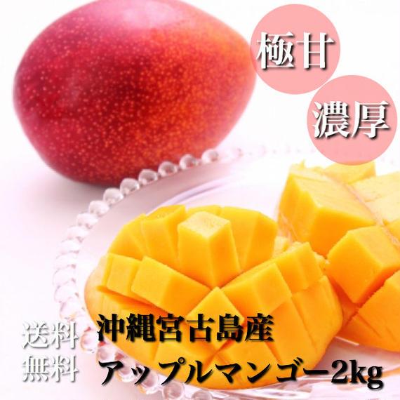 沖縄宮古島産アップルマンゴー美麗品2kg