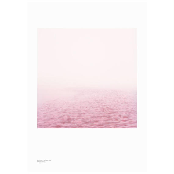 [poster] Elbe(rosa) by Anne Schwalbe