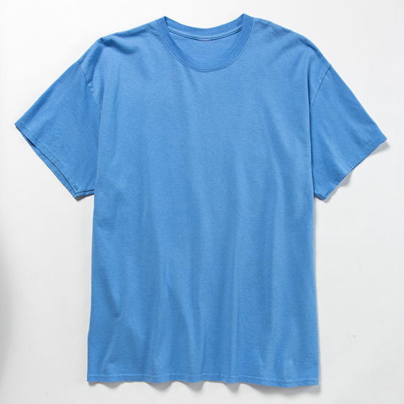 Anti-Stain 2 Pack Tee/ASH BLUE x ASH PINK