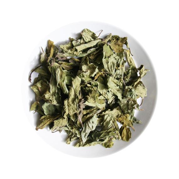 【茶】完全無農薬 はきの 自然栽培「柿の葉」乾燥茶葉 20g(日月茶起+自然舎本舗 共同製造<数量限定 薬草茶>)