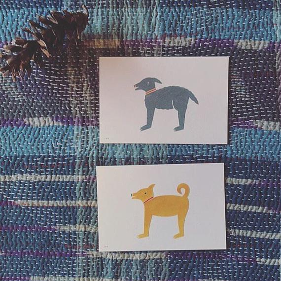 ノラヤ 犬のカード