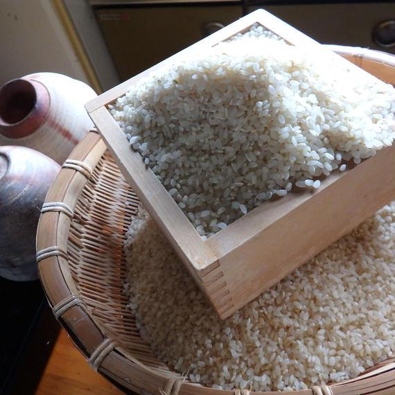 自然栽培米 ささしぐれ10kg      2018年度産(最大20kgまで ご注文できます)