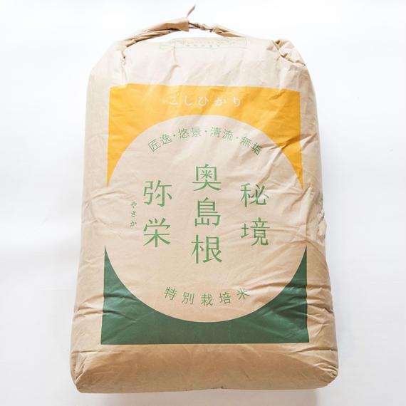 こしひかり(玄米) 30kg
