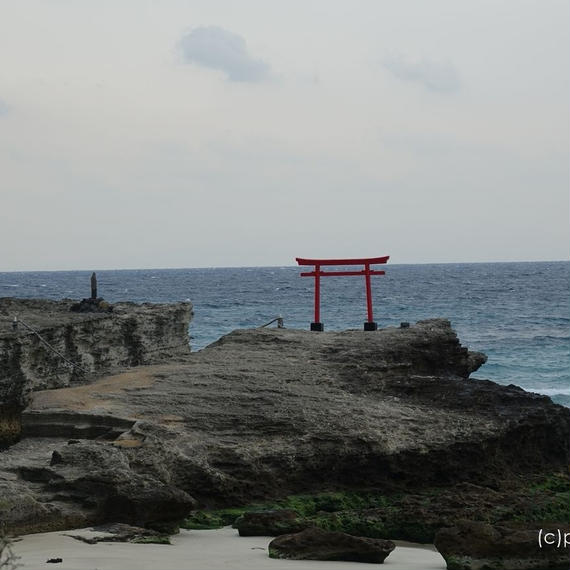 伊豆下田の白濱神社(白浜神社)の海浜鳥居[商用利用OK]