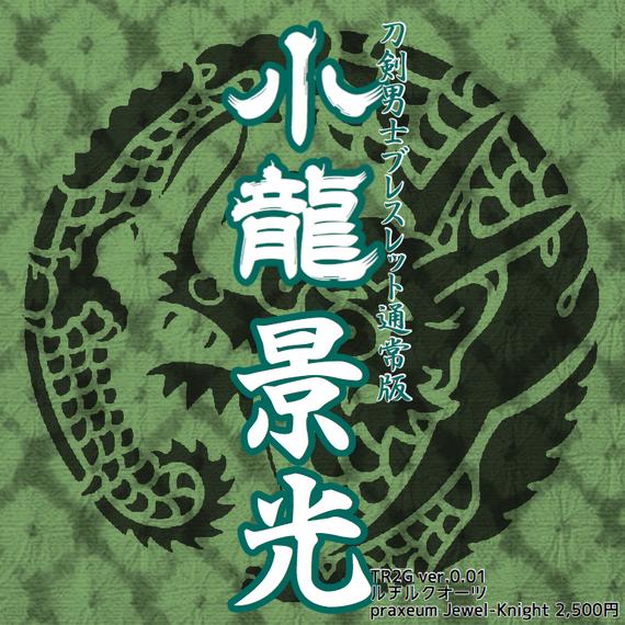 小龍景光 ブレスレット TR2G ver.0.01 プロトタイプ版