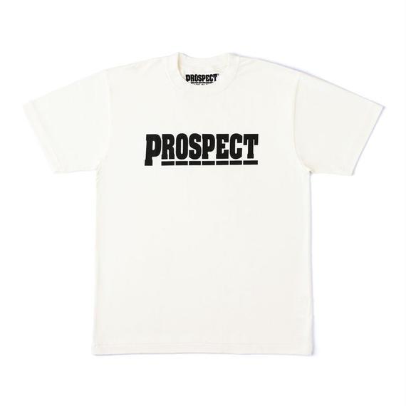 PROSPEC-TEX0004