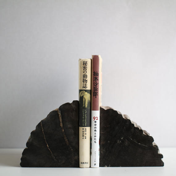 Petrified Wood Book End(BLACK)