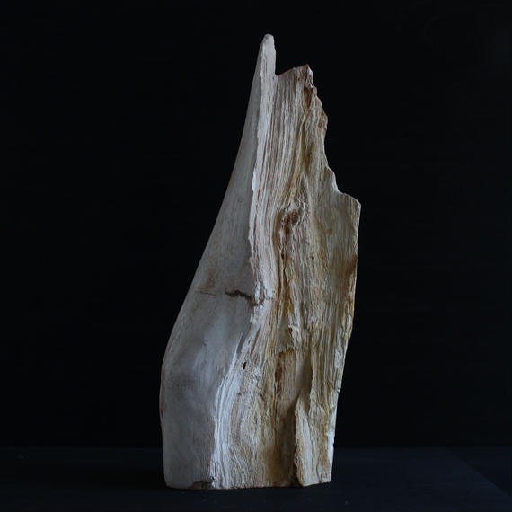 Petrified Wood Statue