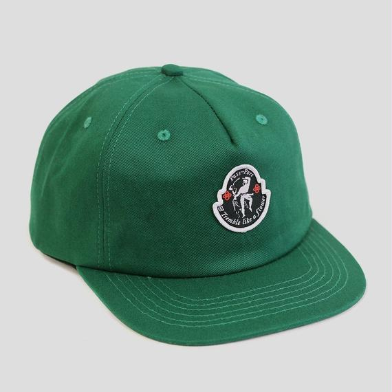 "PASS~PORT ""TREMBLE"" 5 PANEL CAP FOREST GREEN"