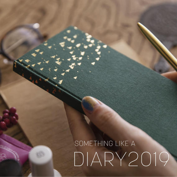 2019スケジュール帳 SOMETHING LIKE A DIARY[Triangle]