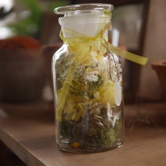 Medicine bottle flower  メディスンボトルフラワー中