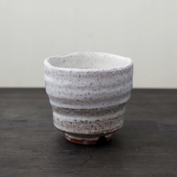 ◆◇陶器 萩焼 輪花◆◇ 白萩湯呑(木箱入) 中村國輔 作