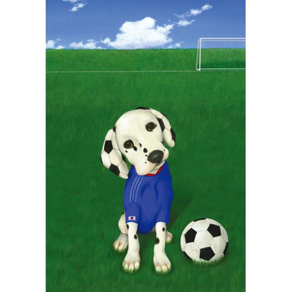 POSTCARD  「サッカーフリーク」